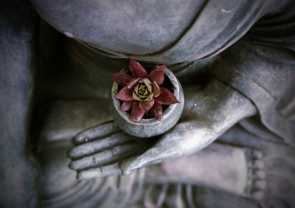 Buddha zen meditation stone balance Feng Shui Spiritualität
